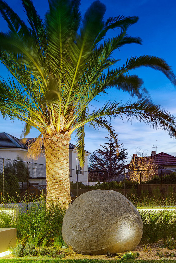 Landscaped garden with palm tree and large rock